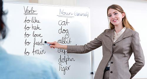 استاد خصوصی زبان